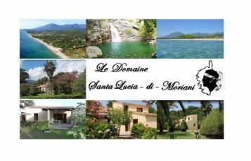 The Estate: villa in Santa Lucia di Moriani for 4 people